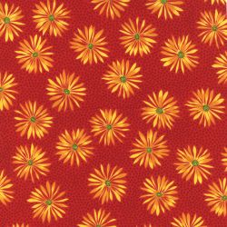 Straw Flower Red